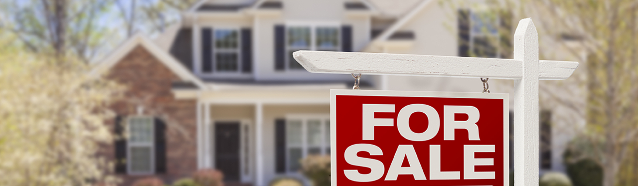 Virtual Home Buying Services